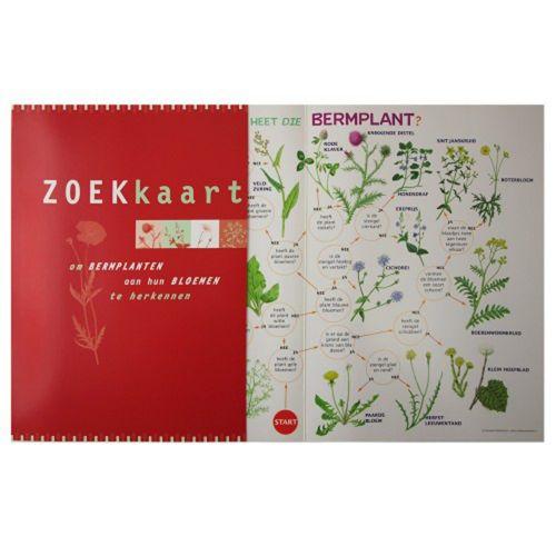 Zoekkaart - Bloeiende Bermplanten