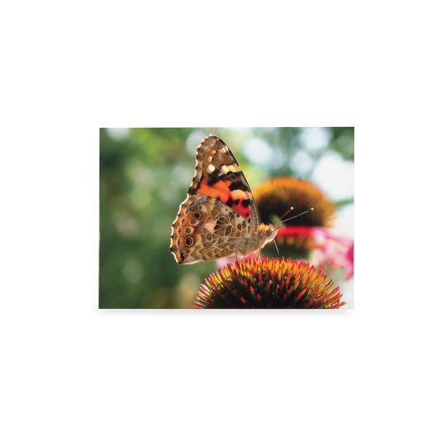 Wenskaart Distelvlinder