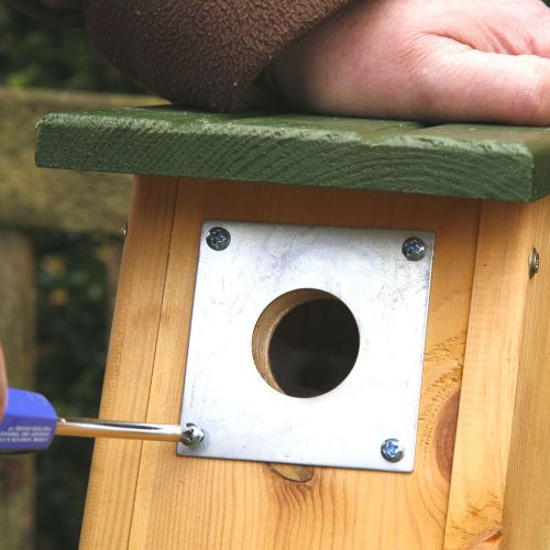 Invliegplaat metaal pimpelmees 28 mm