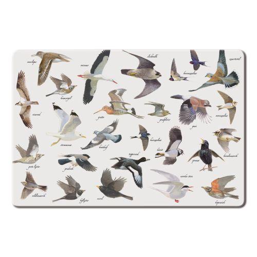 Placemat Vogels