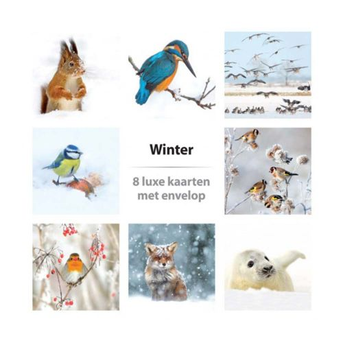 Kaartenset Winter