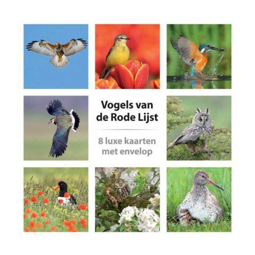 Kaartenset vogels van de rode lijst