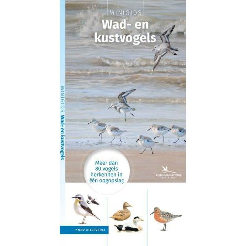 Minigids Wad- en kustvogels 9789050116916