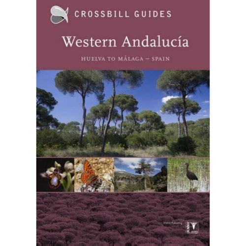 Crossbill Guide Western Andalucia