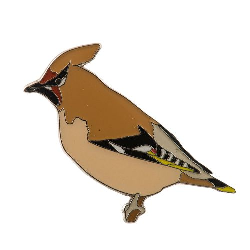 Pin Pestvogel