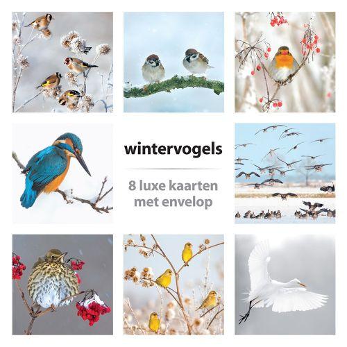 Wenskaartenset winter 8 stuks