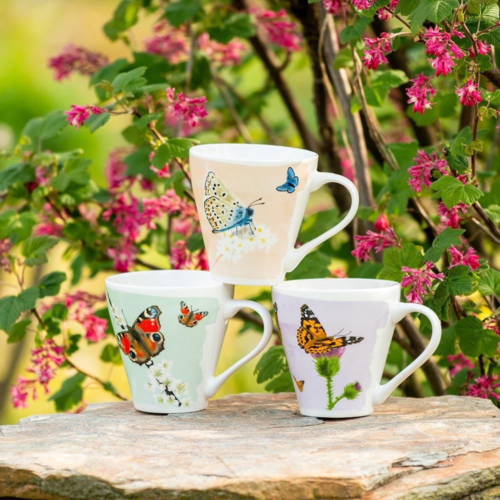 Mokkenset vlinders - Myrte