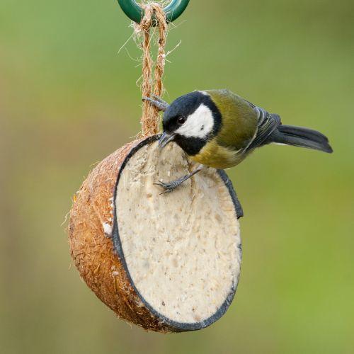Gevulde halve kokosnoot