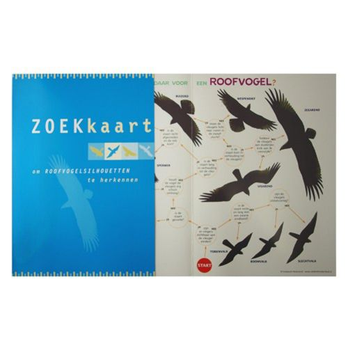 Zoekkaart - Roofvogelsilhouetten