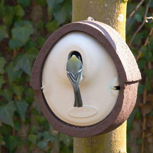 Vivara Nestkast Woodstone groen ovaal
