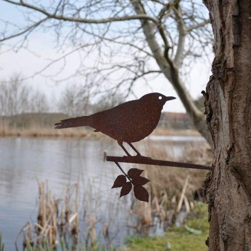 Metalbird merel