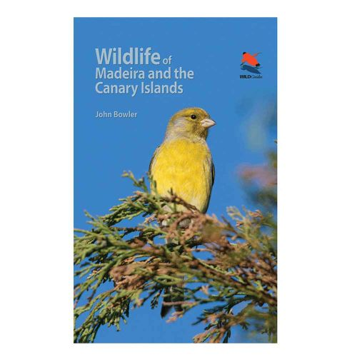 Wildlife of Madeira and Canary Islands: A Photographic Field Guide to Birds