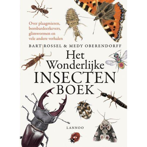 Het wonderlijke insectenboek