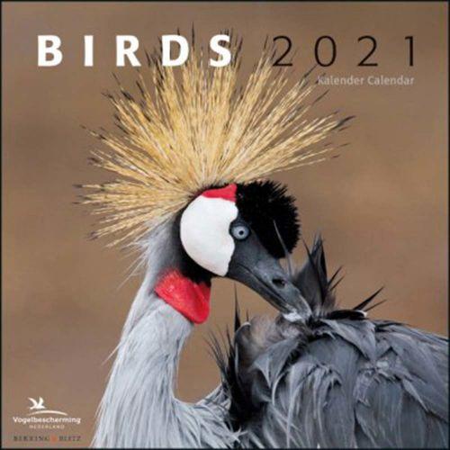 Birds kalender 2021 - kleine uitvoering
