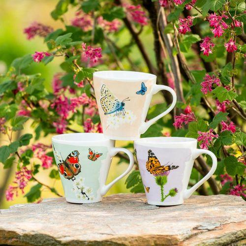 Mokkenset vlinder - Myrte