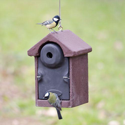 Vivara Nestkast Woodstone vrijhangend 28 mm