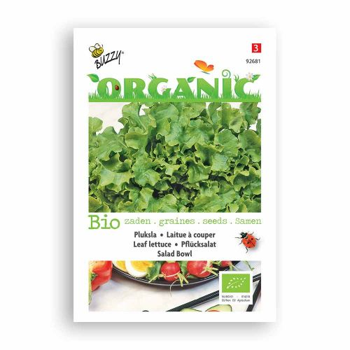 Buzzy® Organic Pluksla Green Salad Bowl  (BIO)