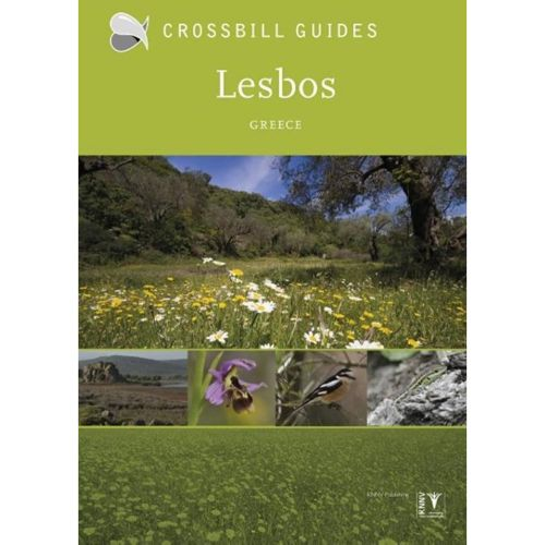Crossbill Guide Lesbos