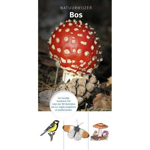 Natuurwijzer - Bos
