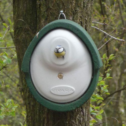 Vivara Nestkast Woodstone groen 32 mm