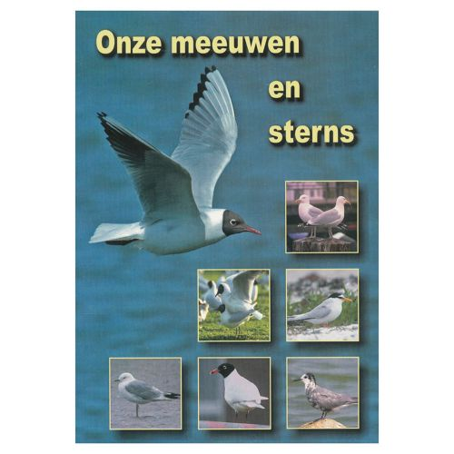 DVD Onze Meeuwen en Sterns