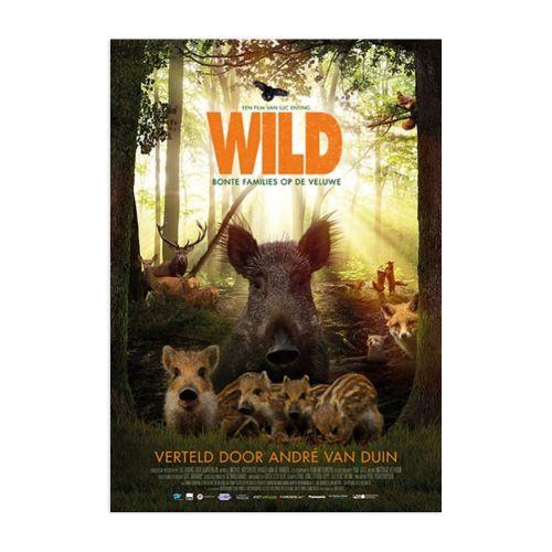 DVD Wild