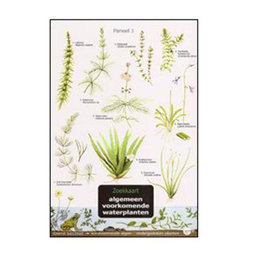 Zoekkaart LNE - Waterplanten